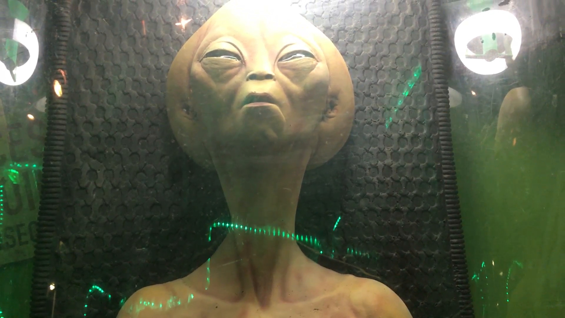 area-51-alien-found-aliens-disturbing-creepy-bizarre-martian_e3zlyv-6l__F0000